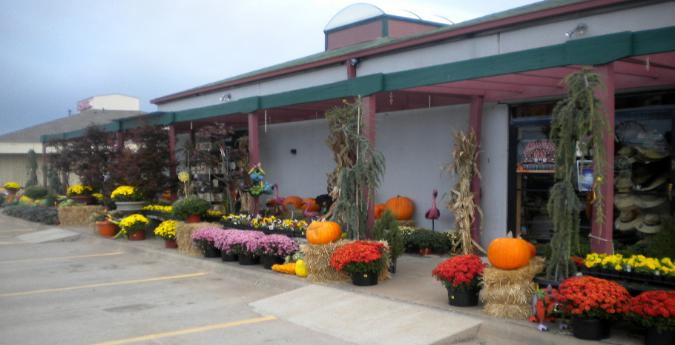 Puckett's Nursery in the Fall